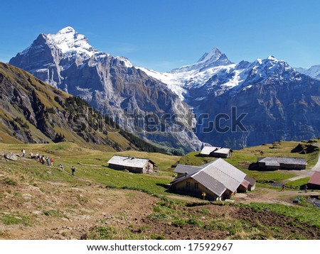 Tourist hiking in swiss alps
