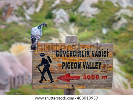 Tourist Information pointer to where his master (pigeon, dove) was sitting. Cappadocia in Central Anatolia is a UNESCO World Heritage Site since 1985, Turkey - stock photo