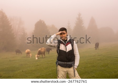 Tourist posing in a meadow with grazing cows - stock photo