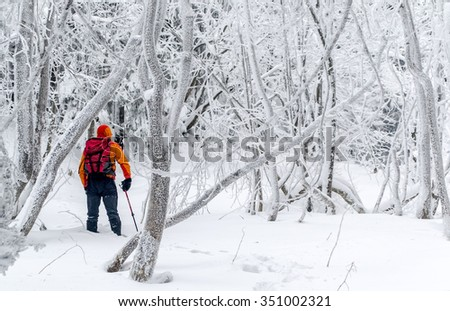 Tourist with a backpack in a frozen forest. Footprints in the snow. Winter walking tour. Different pastime. Ukraine. - stock photo