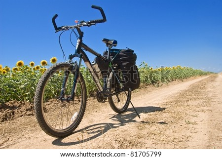 touristic bicycle on a road