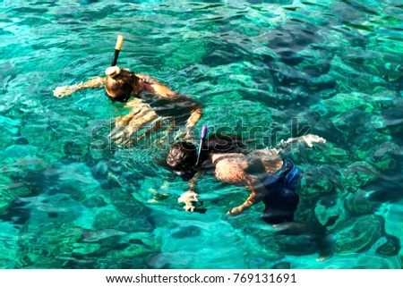 Tourists are engaged in snorkeling in the open sea. Holidays in the seaside resort.