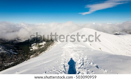 tourists enjoying high mountains in snow on a sunny day. sun and blue sky in slovakia