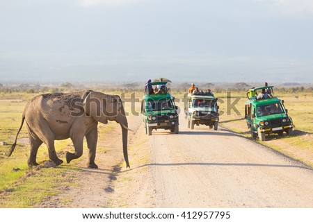 Tourists in safari jeeps watching and taking photos of big wild elephant crossing dirt roadi in Amboseli national park, Kenya. Panorama. - stock photo