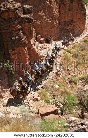 Tourists on mules in Grand Canyon - stock photo