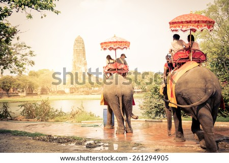 Tourists riding elephants in Ayutthaya,Thailand - stock photo