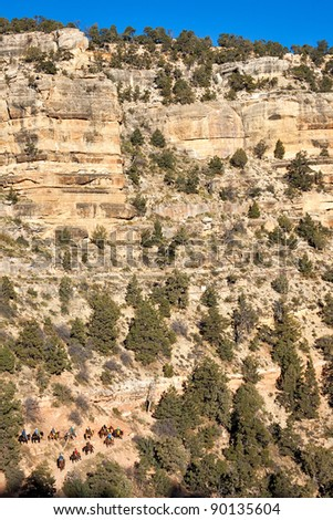 Tourists riding mules on Bright Angel Trail in Grand Canyon. - stock photo