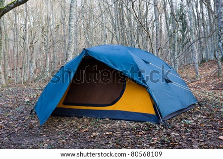 tourists tent in leafless forest