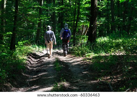 Tourists walking dirt path through a green forest - stock photo