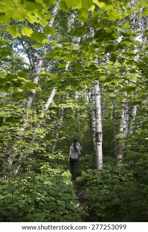 Tourists walking in a forest, Riding Mountain National Park, Manitoba, Canada - stock photo