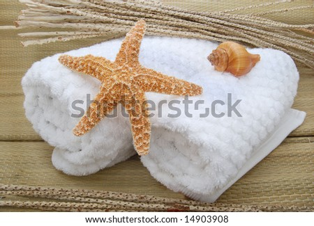 towels and shells