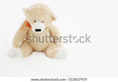 Toy bear lost in snow