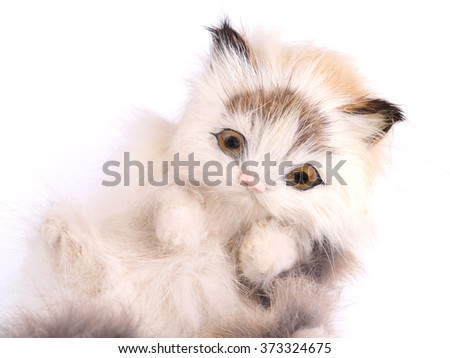 toy kitten on a white background