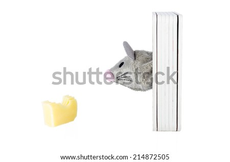 Toy mouse with cheese isolated on white background - stock photo