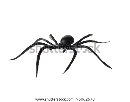 Toy Spider isolated on white background