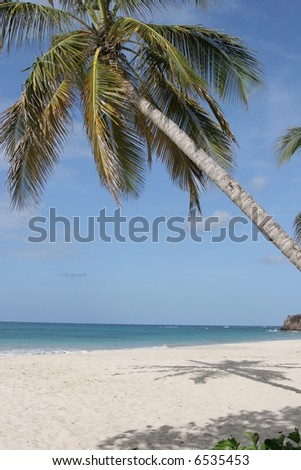 Trabaud beach, Martinique