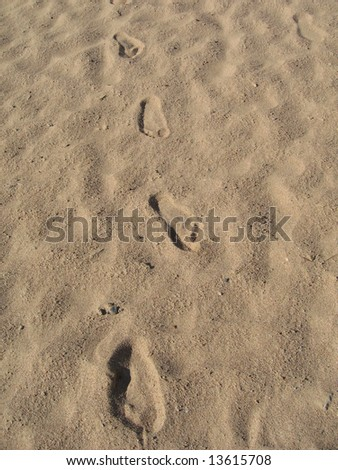 trace on  wet sand goes far away
