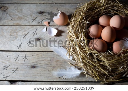 Traces of Chicken on an Old Rustic Wooden Table Next to a Nest With Brown Chicken Eggs, View From the Top  - stock photo