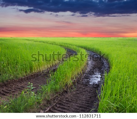 Traces of the wheel in the rice harvest with cloudy sky as a backdrop. - stock photo