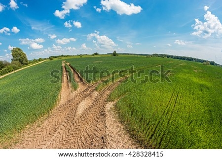 Traces of truck tires on the green wheat field - stock photo