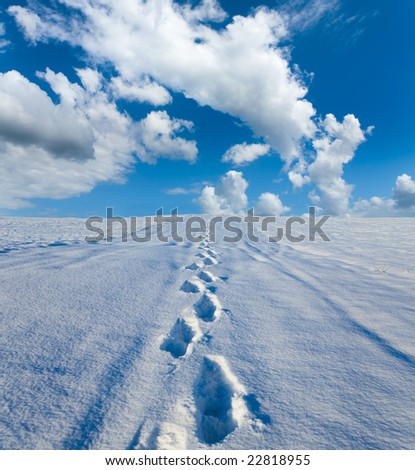 Traces on a snow - stock photo