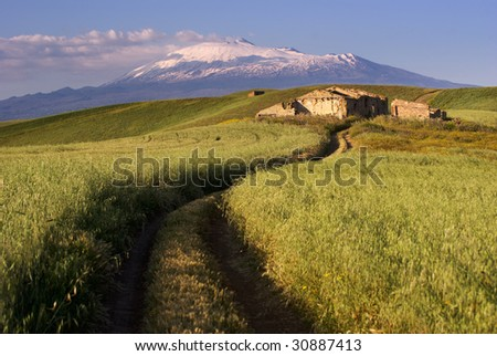 track cross cereal field on background Etna - stock photo
