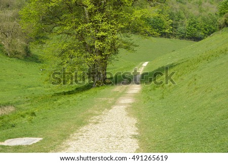 Track through valley in English countryside. West Sussex, England