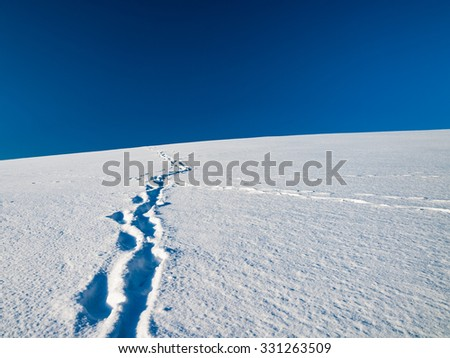Tracks in Snow Covered Field - stock photo