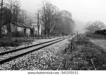 Tracks in the mist.