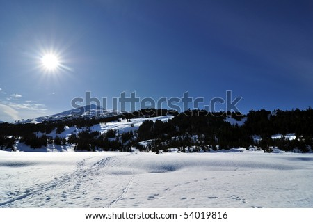 Tracks in the snow, Alaskan landscape - stock photo