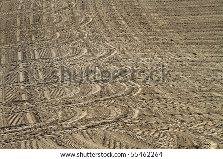 tracks on a field