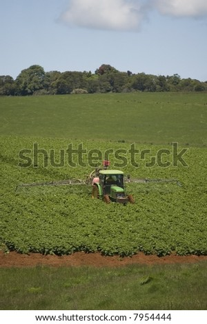 tractor harvesting in a field of potatoes - stock photo