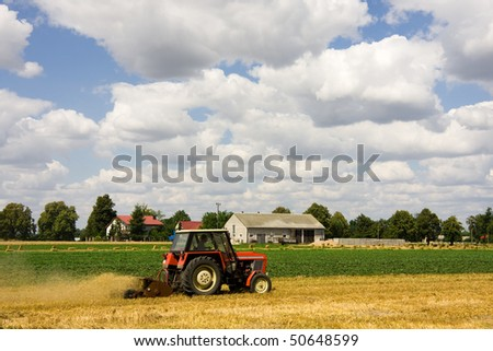 Tractor harvesting wheat field in summer day - stock photo