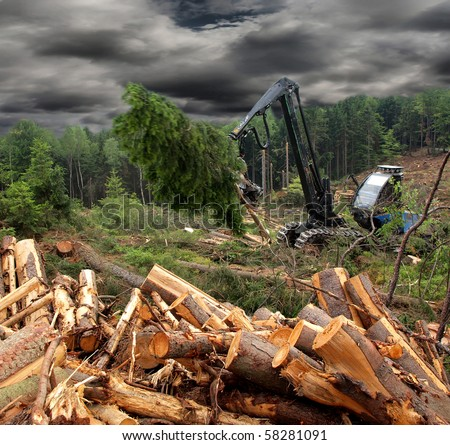 Tractor harvesting wood - stock photo