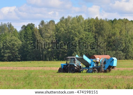 Tractor harvests potatoes on the field
