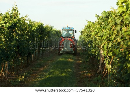Tractor in the vineyard spraying toxic protection - stock photo