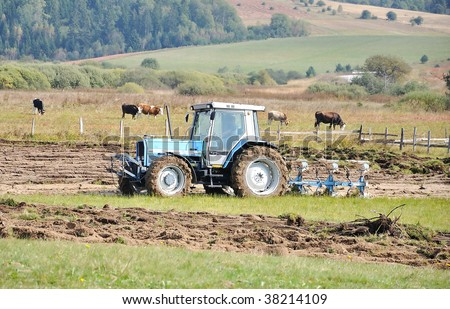Tractor on field and cows behind - stock photo