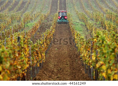 Tractor on the vineyard - stock photo