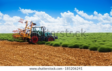 Tractor plowing lavender field - stock photo