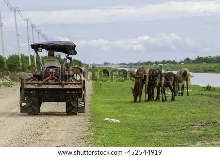 Tractor running on road.horses in the countryside.Thailand - stock photo