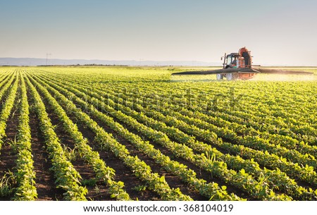 Tractor spraying pesticides on soybean - stock photo