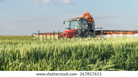 Tractor spraying wheat in spring - stock photo