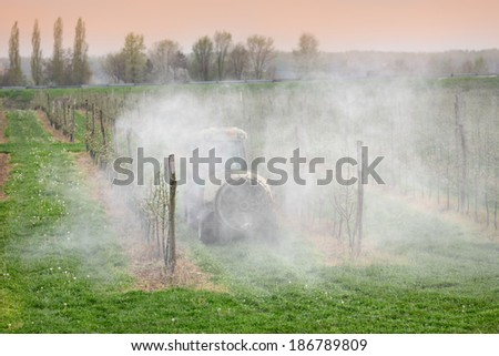 Tractor sprays  insecticide or fungicide in apple orchard  - stock photo