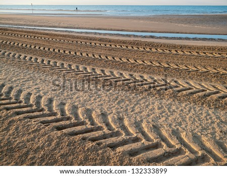 Tractor tire tracks on beach