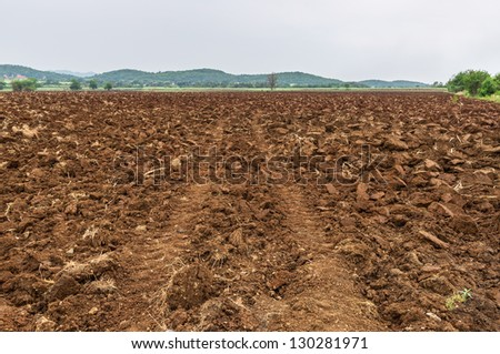 tractor traces in field - stock photo