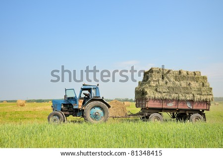 Tractor with hay. The tractor carrying hay. Bales of hay stacked in the cart. - stock photo