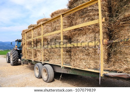 Tractor with trailer and bales of hay - stock photo