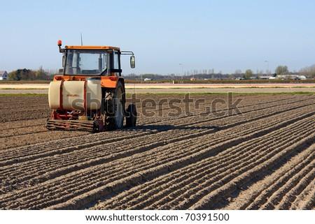 Tractor working on Dutch flower bulb field - stock photo