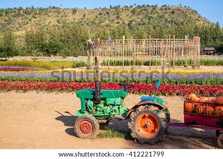 tractors carrying pimkin in beautiful garden - stock photo