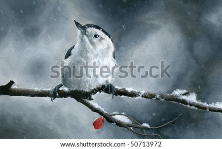 Traditional acrylic painting of a beautiful white-breasted nuthatch on a branch with a dried red berry, enduring a blizzard. - stock photo